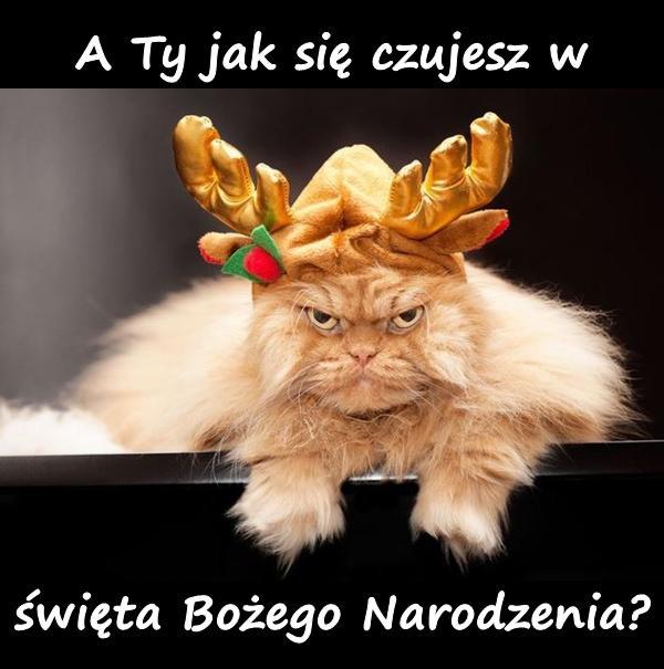 A Ty jak się czujesz w święta Bożego Narodzenia?
