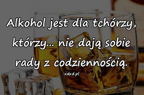 Alkohol jest dla tchórzy, którzy... nie dają sobie rady z codziennością.