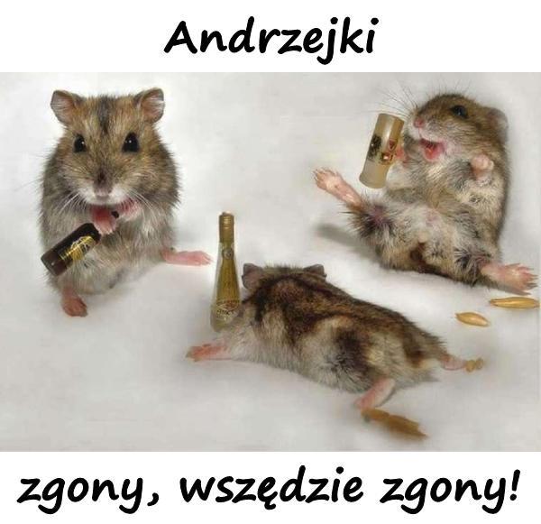 Andrzejki - zgony, wszędzie zgony!