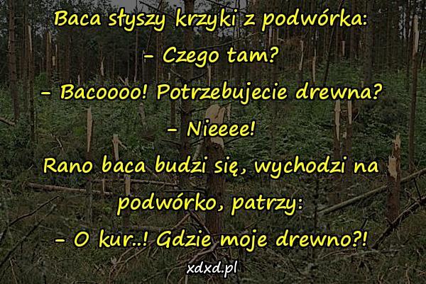 Baca słyszy krzyki z podwórka: - Czego tam? - Bacoooo! Potrzebujecie drewna? - Nieeee! Rano baca budzi się, wychodzi na podwórko, patrzy: - O kur..! Gdzie moje drewno?!