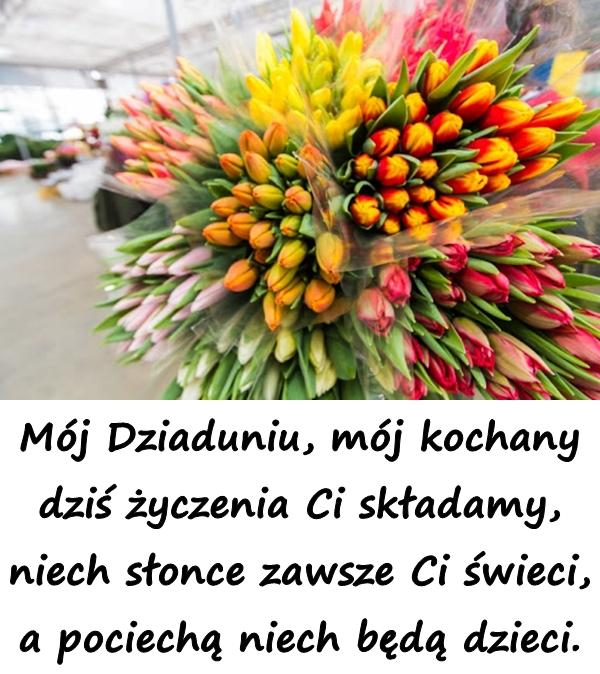 Kiedy dzień Dziadka zaświta, wiązanką kwiatów go witam. Bądź zdrowy Dziadku kochany i bądź zawsze razem z nami.