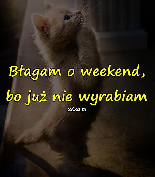 Błagam o weekend, bo już nie wyrabiam