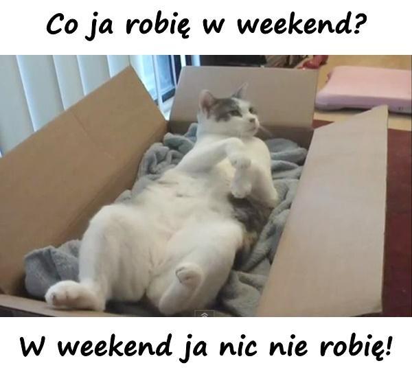 Co ja robię w weekend? W weekend ja nic nie robię!