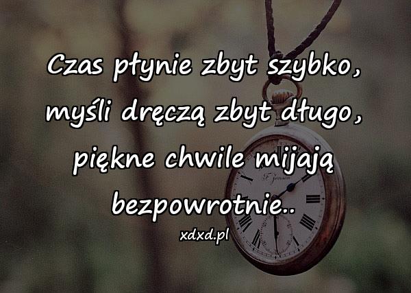 Czas płynie zbyt szybko, myśli dręczą zbyt długo, piękne chwile mijają bezpowrotnie..