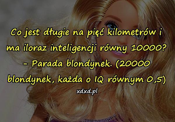 Co jest długie na pięć kilometrów i ma iloraz inteligencji równy 10000? - Parada blondynek. (20000 blondynek, każda o IQ równym 0,5)
