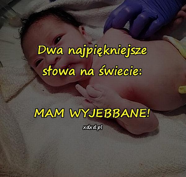 Dwa najpiękniejsze słowa na świecie: MAM WYJEBBANE!