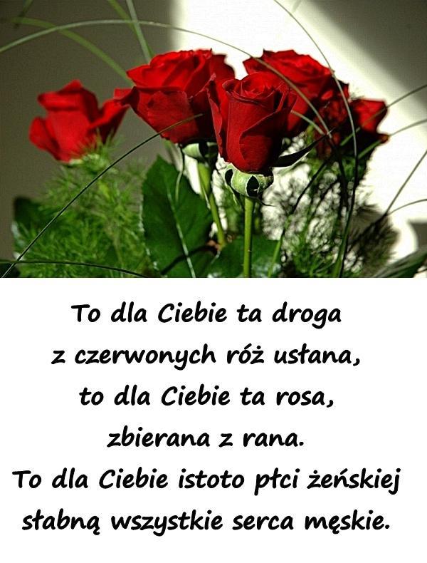 To dla Ciebie ta droga z czerwonych róż usłana, to dla Ciebie ta rosa, zbierana z rana. To dla Ciebie istoto płci żeńskiej słabną wszystkie serca męskie.