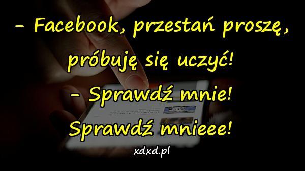 - Facebook, przestań proszę, próbuję się uczyć! - Sprawdź mnie! Sprawdź mnieee!