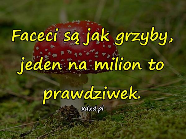 Faceci są jak grzyby, jeden na milion to prawdziwek.