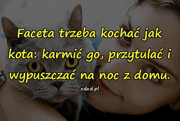 Faceta trzeba kochać jak kota: karmić go, przytulać i wypuszczać na noc z domu.