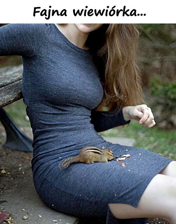 Fajna wiewiórka...