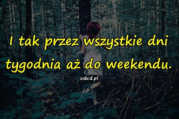 I tak przez wszystkie dni tygodnia aż do weekendu.