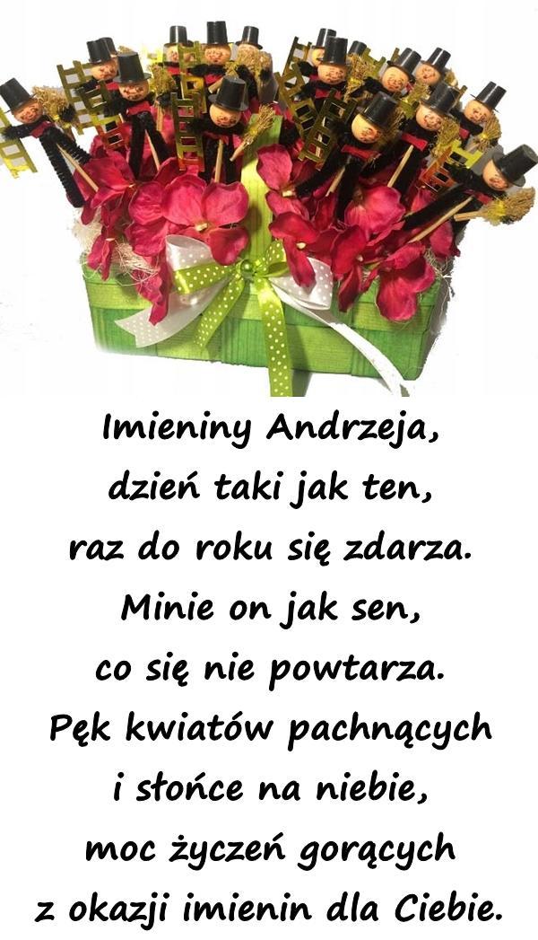 Imieniny Andrzeja, dzień taki jak ten, raz do roku się zdarza. Minie on jak sen, co się nie powtarza. Pęk kwiatów pachnących i słońce na niebie, moc życzeń gorących z okazji imienin dla Ciebie.