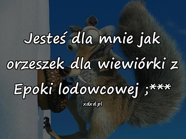 Jesteś dla mnie jak orzeszek dla wiewiórki z Epoki lodowcowej ;***