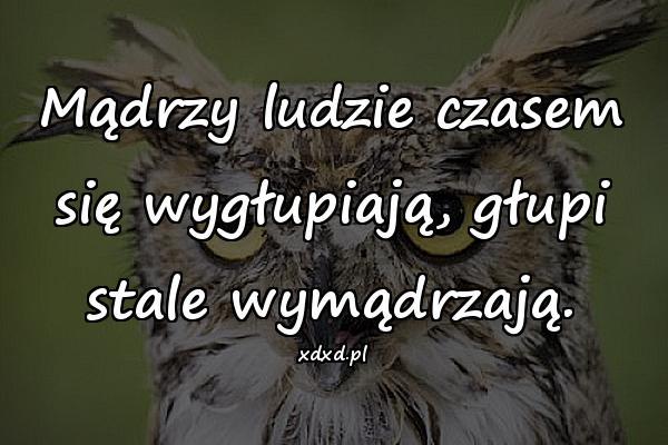 Głupota Mem Cytaty Cytat Temysli Aforyzmy Mądrość