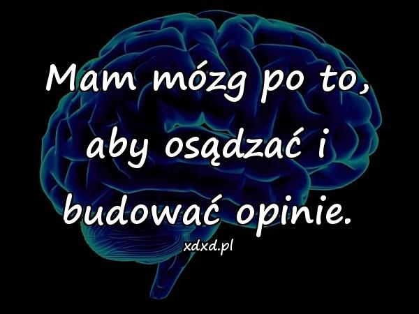 Mam mózg po to, aby osądzać i budować opinie.