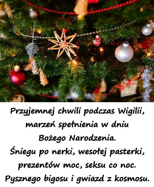 Przyjemnej chwili podczas Wigilii, marzeń spełnienia w dniu Bożego Narodzenia. Śniegu po nerki, wesołej pasterki, prezentów moc, seksu co noc. Pysznego bigosu i gwiazd z kosmosu.