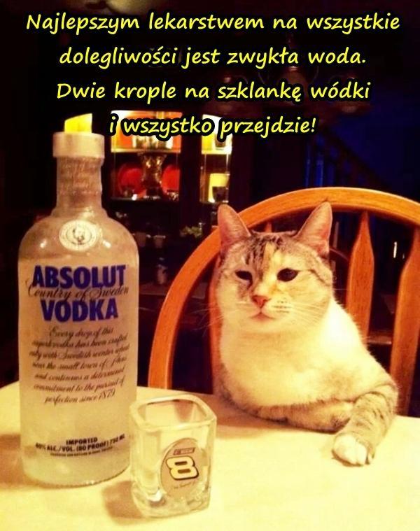 Najlepszym lekarstwem na wszystkie dolegliwości jest zwykła woda. Dwie krople na szklankę wódki i wszystko przejdzie!