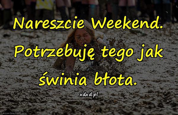 Nareszcie Weekend. Potrzebuję tego jak świnia błota.