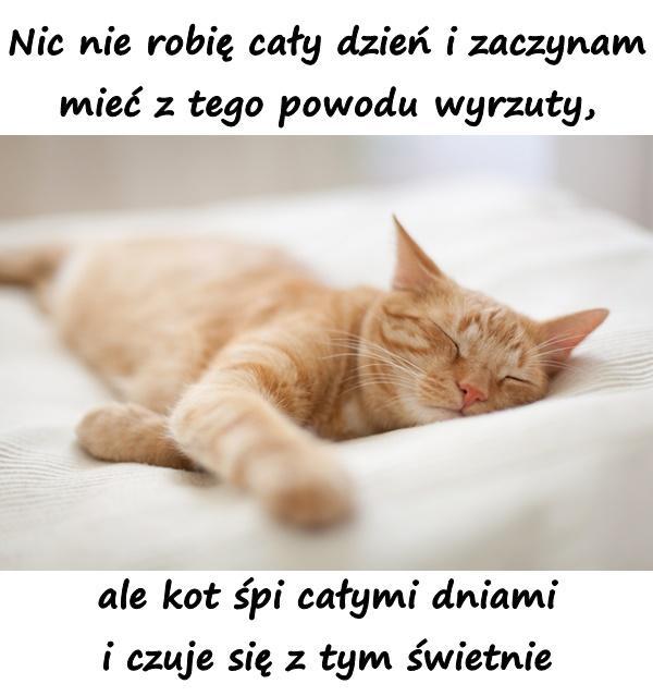 Nic nie robię cały dzień i zaczynam mieć z tego powodu wyrzuty, ale kot śpi całymi dniami i czuje się z tym świetnie