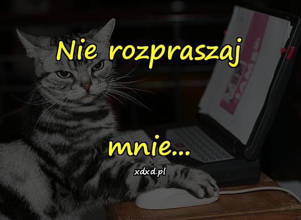Nie rozpraszaj mnie...
