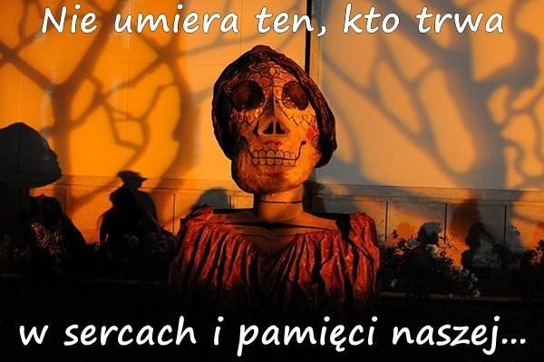 Wiersze Cytaty Memy święto Zmarłych Bliscy Wszystkich