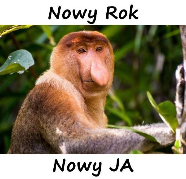 Nowy Rok - Nowy JA