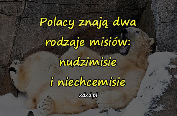 Polacy znają dwa rodzaje misiów: nudzimisie i niechcemisie