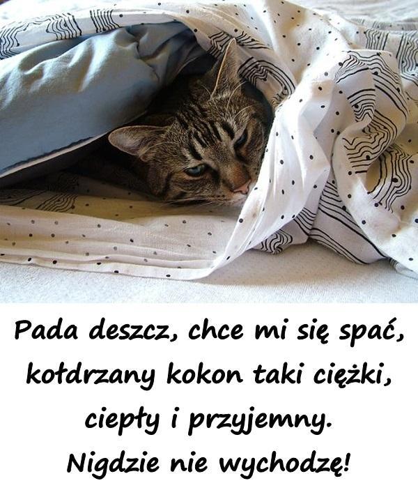 Pada deszcz, chce mi się spać, kołdrzany kokon taki ciężki, ciepły i przyjemny. Nigdzie nie wychodzę!
