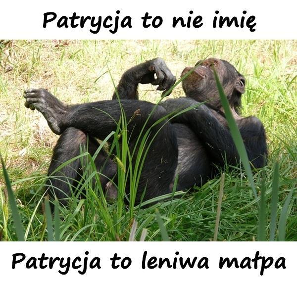 Patrycja to nie imię, Patrycja to leniwa małpa!