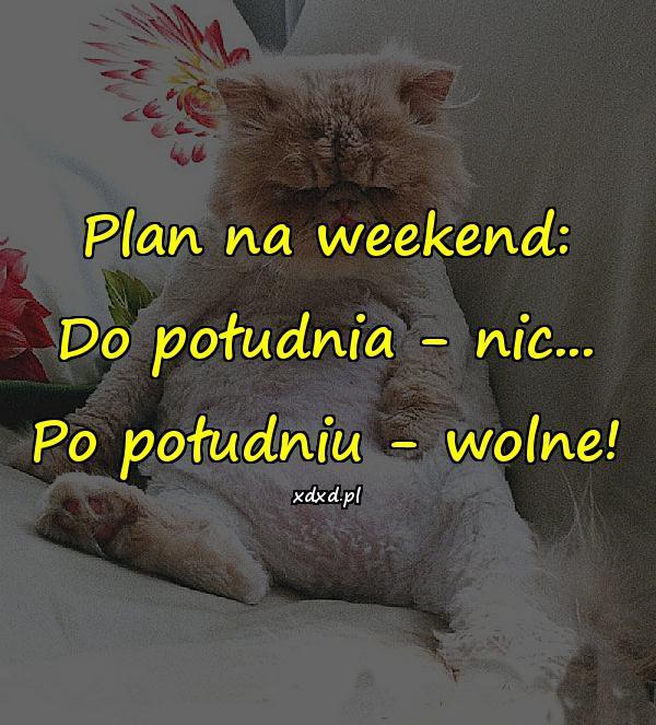 Plan na weekend: Do południa - nic... Po południu - wolne!