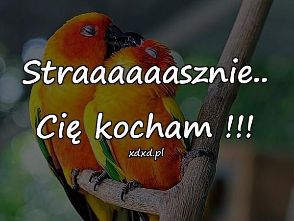 Straaaaaasznie.. Cię kocham !!!