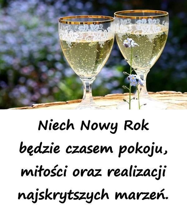 Niech Nowy Rok będzie czasem pokoju, miłości oraz realizacji najskrytszych marzeń.