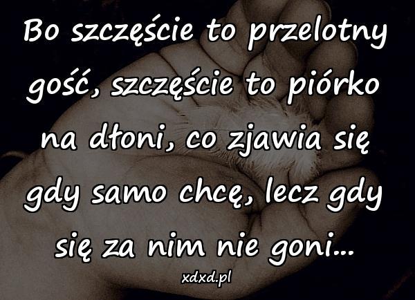 Mem Memy Cytaty Dłoń Gość Obrazki życie Piórko