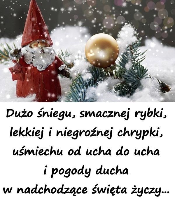 Dużo śniegu, smacznej rybki, lekkiej i niegroźnej chrypki, uśmiechu od ucha do ucha i pogody ducha w nadchodzące święta życzy...
