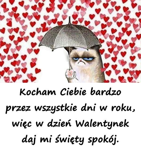 Kocham Ciebie bardzo przez wszystkie dni w roku, więc w dzień Walentynek daj mi święty spokój.