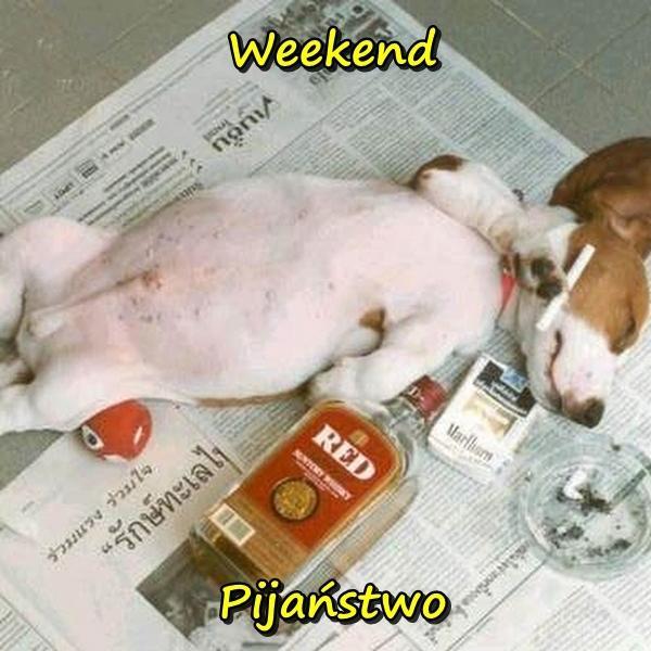 Weekend - pijaństwo