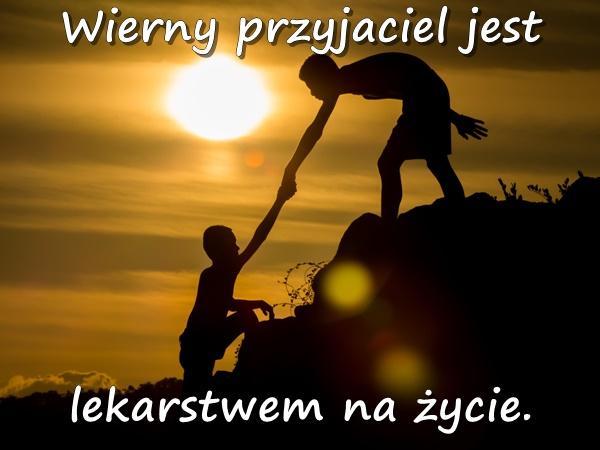 Wierny przyjaciel jest lekarstwem na życie.