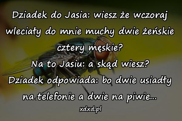 Dziadek do Jasia: wiesz że wczoraj wleciały do mnie muchy dwie żeńskie cztery męskie? Na to Jasiu: a skąd wiesz? Dziadek odpowiada: bo dwie usiadły na telefonie a dwie na piwie...