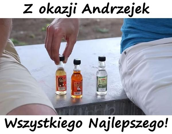 Z okazji Andrzejek Wszystkiego Najlepszego!