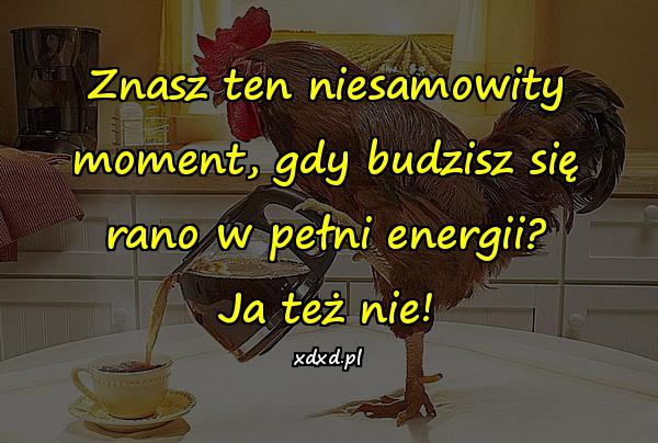 Znasz ten niesamowity moment, gdy budzisz się rano w pełni energii? Ja też nie!