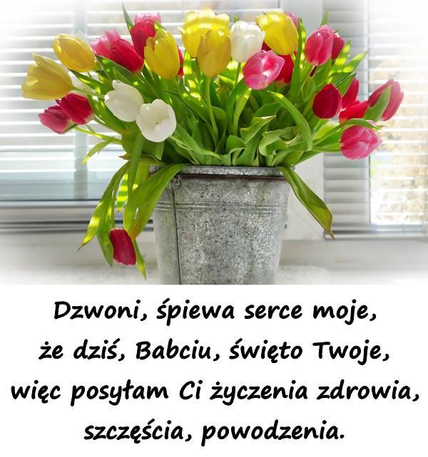 Dzwoni, śpiewa serce moje, że dziś, Babciu, święto Twoje, więc posyłam Ci życzenia zdrowia, szczęścia, powodzenia.
