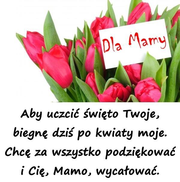 Aby uczcić święto Twoje, biegnę dziś po kwiaty moje. Chcę za wszystko podziękować i Cię, Mamo, wycałować.