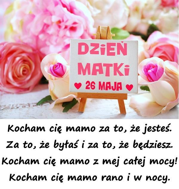 Życzenia na Dzień Matki: Kocham cię mamo rano i w nocy. - xDxD (7142)