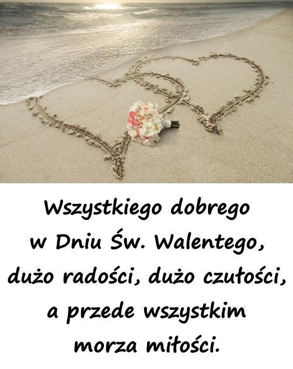 Wszystkiego dobrego w Dniu Św. Walentego, dużo radości, dużo czułości, a przede wszystkim morza miłości.